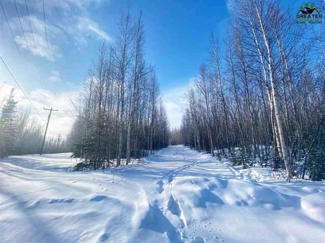 NHN Buddy Street, Delta Junction, AK 99737 (MLS #146481) :: RE/MAX Associates of Fairbanks