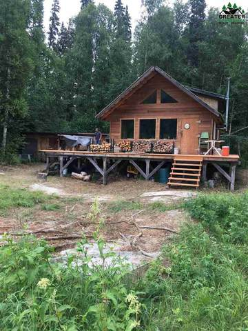 NHN Salcha River, Salcha, AK 99714 (MLS #146526) :: RE/MAX Associates of Fairbanks