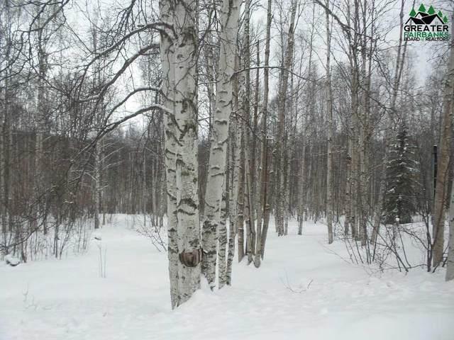 1185 Donna Drive, Fairbanks, AK 99712 (MLS #146542) :: RE/MAX Associates of Fairbanks