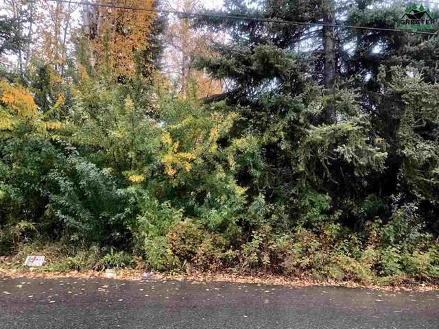 NHN Twenty-First Avenue, Fairbanks, AK 99701 (MLS #146594) :: RE/MAX Associates of Fairbanks