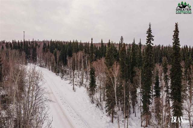 NHN Old Site Road, Salcha, AK 99714 (MLS #146595) :: RE/MAX Associates of Fairbanks