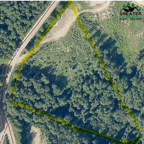 NHN Violet Drive, Fairbanks, AK 99712 (MLS #146663) :: RE/MAX Associates of Fairbanks