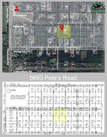 5693 Clearwater Road, Delta Junction, AK 99737 (MLS #146677) :: RE/MAX Associates of Fairbanks