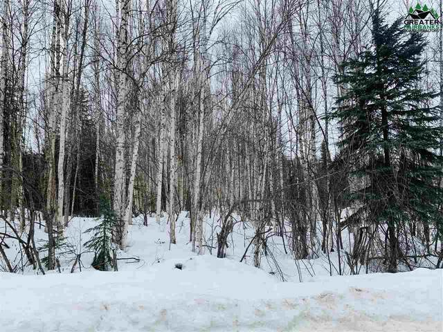 NHN Florence Street, North Pole, AK 99705 (MLS #146696) :: RE/MAX Associates of Fairbanks