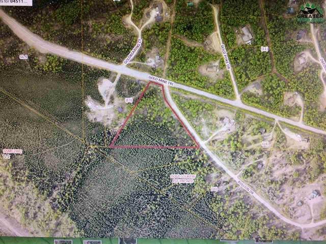285 Bullion Drive, Fairbanks, AK 99712 (MLS #146764) :: RE/MAX Associates of Fairbanks