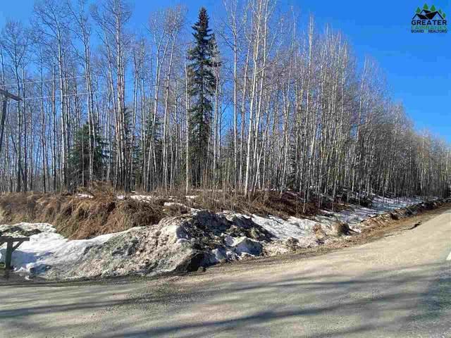 NHN Arctic Loon Circle, Fairbanks, AK 99709 (MLS #146779) :: Powered By Lymburner Realty