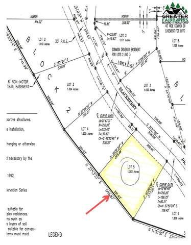 Lot 5 Block 2 Blackberry Drive, Fairbanks, AK 99712 (MLS #146861) :: Powered By Lymburner Realty