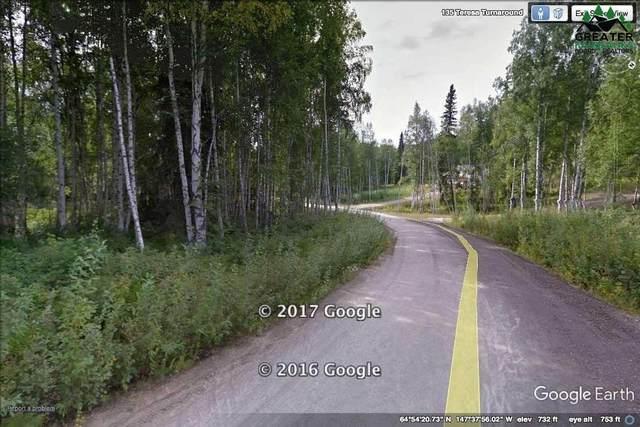 L4B2 NHN Teresa Turnaround/Mcgrath, Fairbanks, AK 99712 (MLS #146899) :: Powered By Lymburner Realty