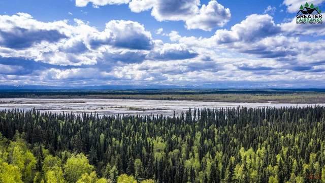 11855 Richardson Highway, Salcha, AK 99714 (MLS #146943) :: RE/MAX Associates of Fairbanks