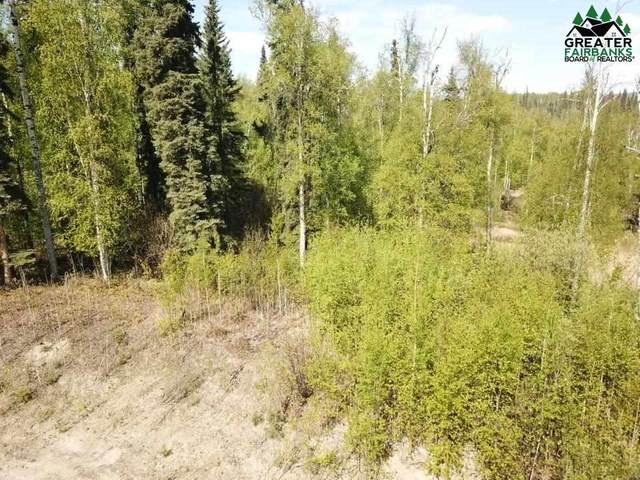 L1 NHN Whispering Meadow Lane, Fairbanks, AK 99712 (MLS #147123) :: Powered By Lymburner Realty