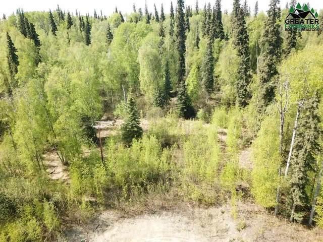 L10 NHN Whispering Meadow Lane, Fairbanks, AK 99712 (MLS #147126) :: Powered By Lymburner Realty