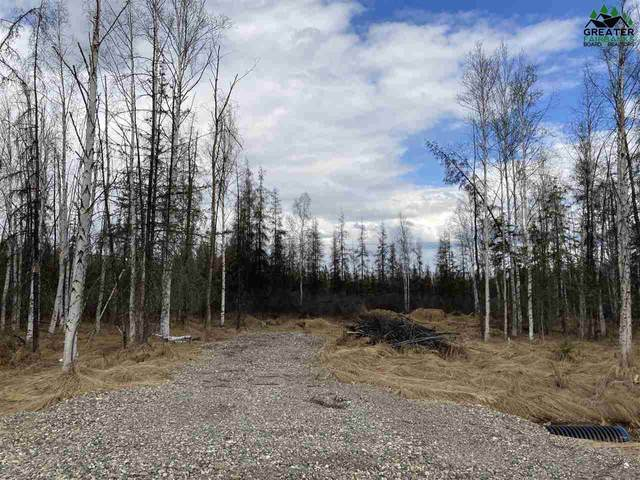 LOT 2A Crazy Frank Street, Fairbanks, AK 99705 (MLS #147133) :: Powered By Lymburner Realty