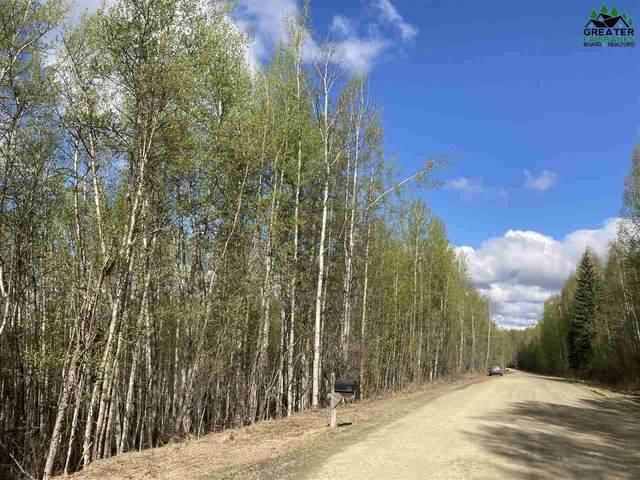 NHN De Pauw Drive, Fairbanks, AK 99709 (MLS #147164) :: RE/MAX Associates of Fairbanks