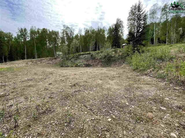 744 Foxview Road, Fairbanks, AK 99712 (MLS #147368) :: Powered By Lymburner Realty