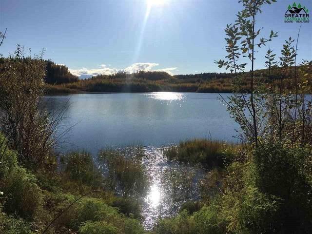 nhn Parks Highway, Fairbanks, AK 99709 (MLS #148131) :: RE/MAX Associates of Fairbanks