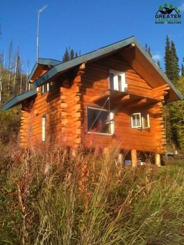 NHN Chatanika River, Fairbanks, AK 99777 (MLS #148159) :: RE/MAX Associates of Fairbanks