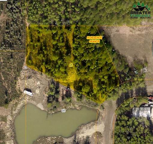 Lot 15 Horseshoe Way, North Pole, AK 99705 (MLS #148385) :: RE/MAX Associates of Fairbanks