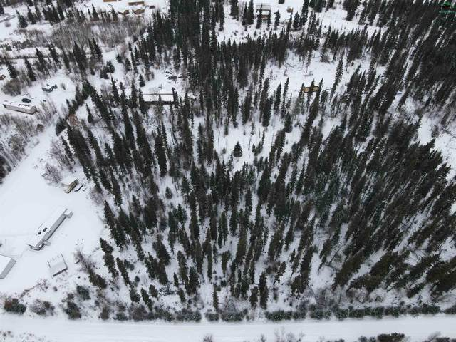 NHN Nhn Richardson Hwy, Delta Junction, AK 99737 (MLS #148584) :: RE/MAX Associates of Fairbanks