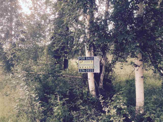 1102 Rosie Creek Road, Fairbanks, AK 99709 (MLS #121460) :: Madden Real Estate