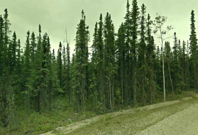 L4B1 Trestrail Loop, North Pole, AK 99705 (MLS #127534) :: Madden Real Estate