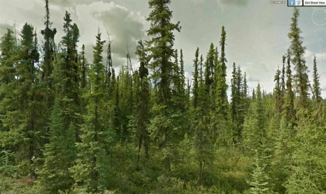 L1B2 Trestrail Loop, North Pole, AK 99705 (MLS #127539) :: Madden Real Estate