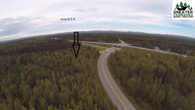 NHN S Buzby Road, North Pole, AK 99705 (MLS #133123) :: Madden Real Estate