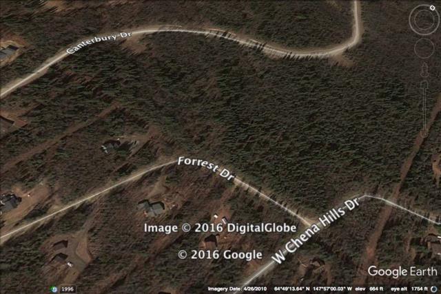 L21B5 NHN Forrest Drive, Fairbanks, AK 99709 (MLS #133757) :: Madden Real Estate