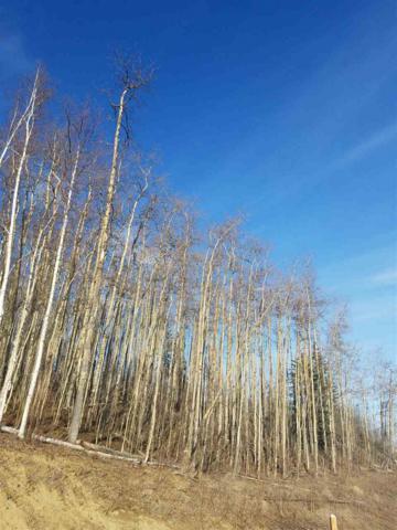 L2B2 NHN Zuckerman Drive, Fairbanks, AK 99712 (MLS #133915) :: Madden Real Estate