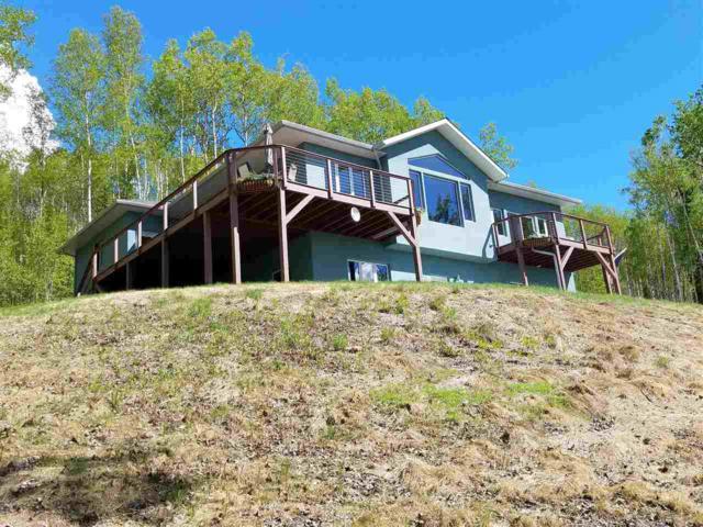 1249 Donna Drive, Fairbanks, AK 99712 (MLS #134214) :: Madden Real Estate