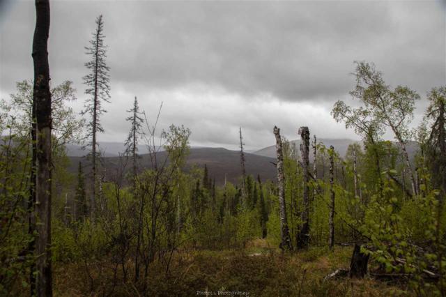 Tract B Steese Highway, Fairbanks, AK 99712 (MLS #134258) :: Madden Real Estate