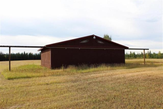 NHN Montana Road, Delta Junction, AK 99737 (MLS #134292) :: Madden Real Estate
