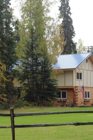 1005 Seawolf Drive, Fairbanks, AK 99701 (MLS #134540) :: Madden Real Estate