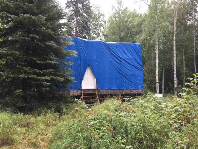 4535 Melan Drive South, Fairbanks, AK 99712 (MLS #134954) :: Madden Real Estate