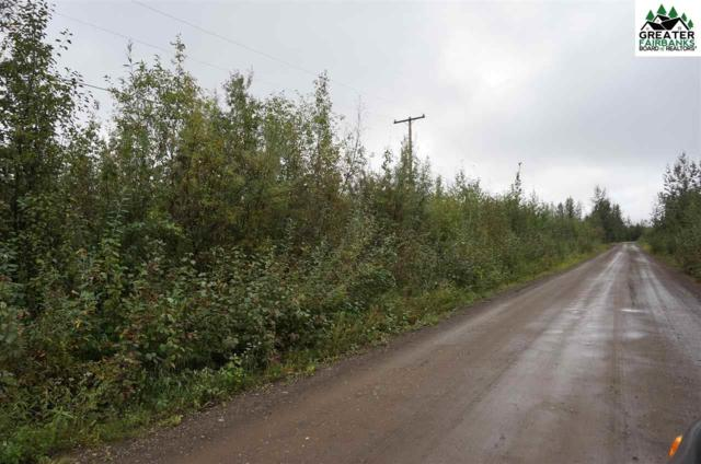 NHN Tootie Street, North Pole, AK 99705 (MLS #135204) :: Madden Real Estate