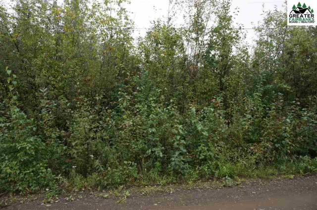 NHN Tootie Street, North Pole, AK 99705 (MLS #135206) :: Madden Real Estate