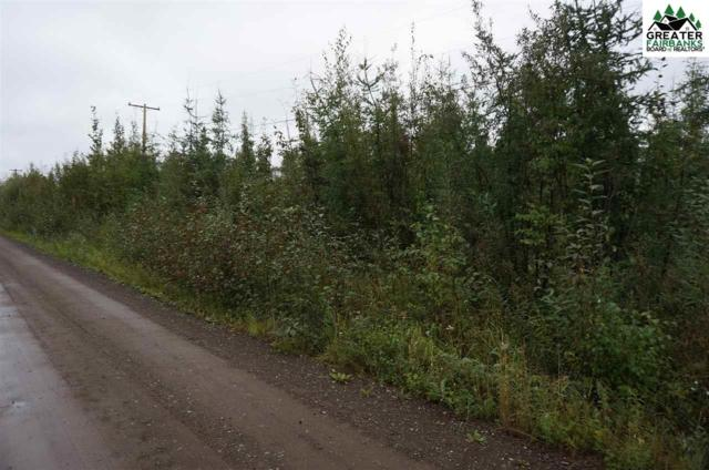 NHN Tootie Street, North Pole, AK 99705 (MLS #135208) :: Madden Real Estate
