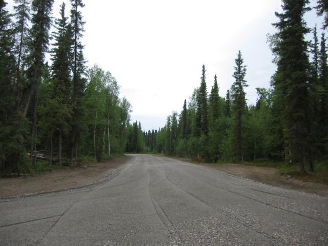 1068 Blanket Boulevard, North Pole, AK 99705 (MLS #135646) :: Madden Real Estate