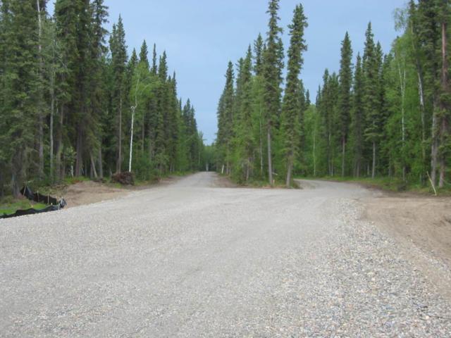 NHN Blanket Boulevard, North Pole, AK 99705 (MLS #135648) :: Madden Real Estate