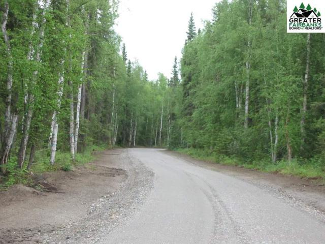 S Blanket Boulevard, North Pole, AK 99705 (MLS #135650) :: Madden Real Estate