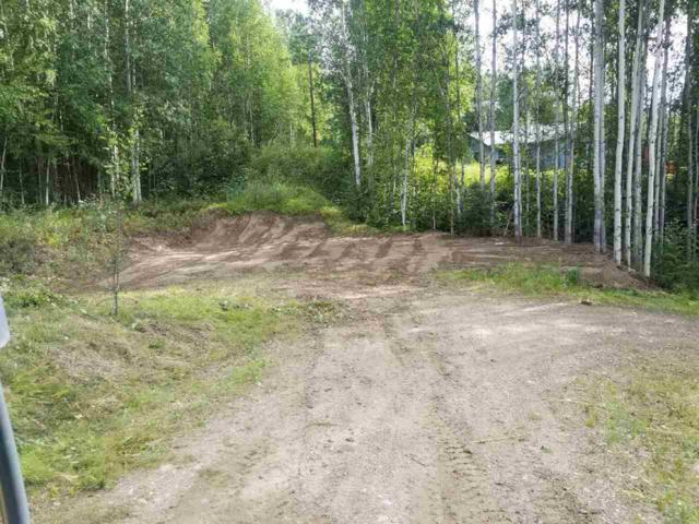 2622 Stellar Way, Fairbanks, AK 99712 (MLS #135876) :: Powered By Lymburner Realty