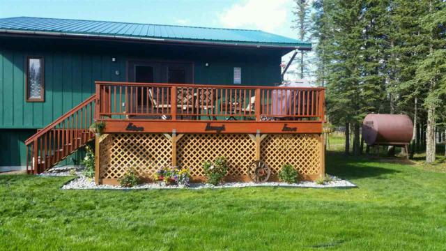 2361 Spriggs Loop, Delta Junction, AK 99737 (MLS #136803) :: Madden Real Estate