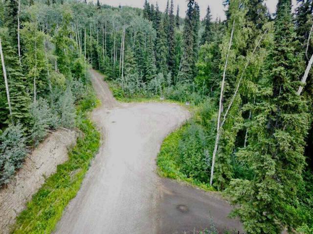 L16B4 Gower Drive, Fairbanks, AK 99709 (MLS #136820) :: Madden Real Estate