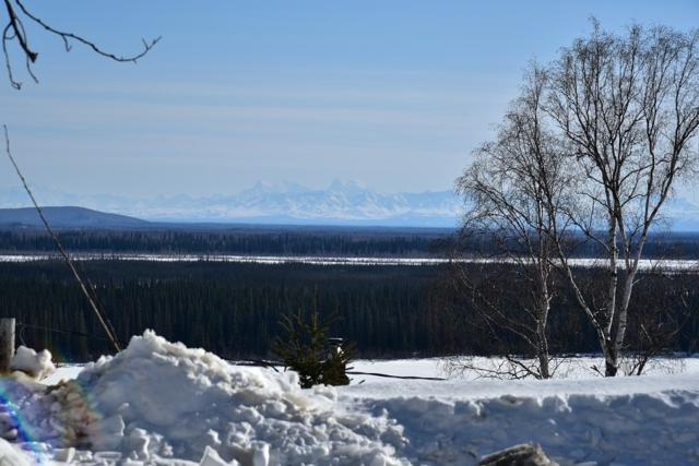 L19B02 Anella Avenue, Fairbanks, AK 99709 (MLS #136851) :: Madden Real Estate