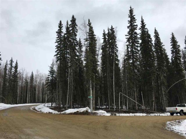 Lot 8 Alyeska Drive, Fairbanks, AK 99709 (MLS #137080) :: Madden Real Estate