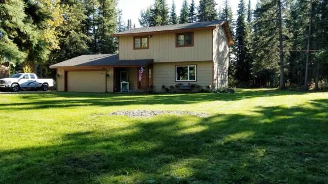 3405 Spruce Branch Drive, North Pole, AK 99705 (MLS #137363) :: Powered By Lymburner Realty