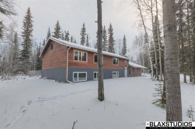 2651 Gold Street, North Pole, AK 99705 (MLS #137594) :: Madden Real Estate