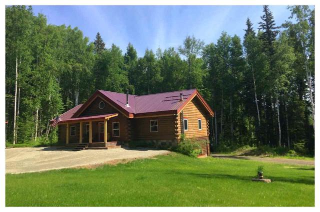 1393 Birchwillow Drive, Fairbanks, AK 99712 (MLS #137661) :: Madden Real Estate