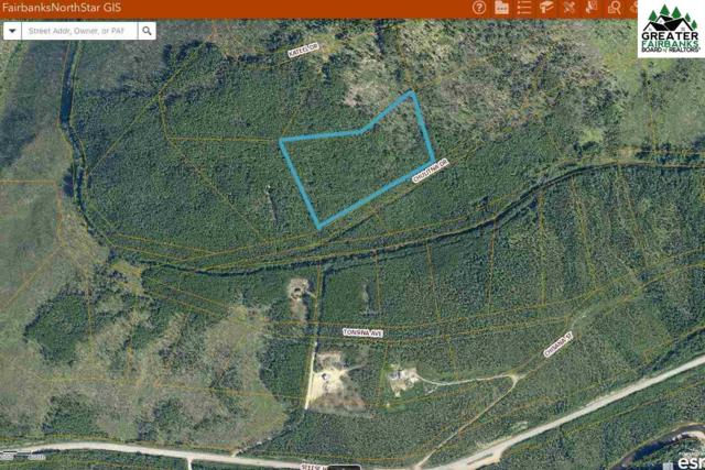 47 mile Steese Highway, Fairbanks, AK 99712 (MLS #137742) :: Powered By Lymburner Realty