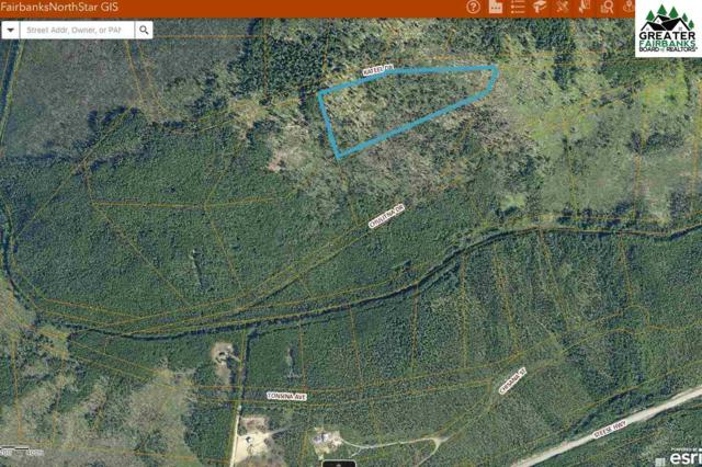 47 MILE Steese Highway, Fairbanks, AK 99712 (MLS #137743) :: Powered By Lymburner Realty