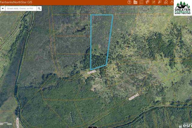 47 MILE Steese Highway, Fairbanks, AK 99712 (MLS #137744) :: Madden Real Estate